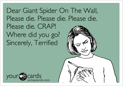 Dear Giant Spider On The Wall, Please die. Please die. Please die. Please die. CRAP! Where did you go? Sincerely, Terrified.