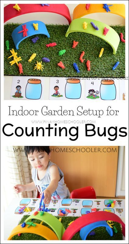 Fun Counting Bugs activity for kids!