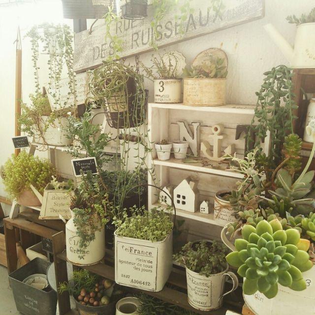 yukiさんの、コンテスト,ベランダガーデン,ガーデン雑貨,多肉植物,多肉とインテリアを目指す,ベランダインテリア,NO GREEN NO LIFE,のお部屋写真