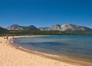 Dog Friendly Beaches in South Lake Tahoe