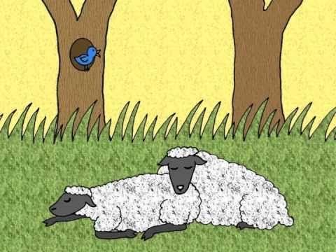 Kinderliedje met beeld: Het schaap heeft slaap - YouTube