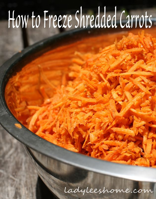 After harvesting 300 carrots, I had some preserving to do. Since we love carrot cake, I shredded and froze most of the carrots.  Here is how to freeze shredded carrots. #LadyLeesHome