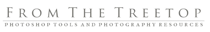 I say this with ALL honesty and certainty. NOT because she is my friend... but because she is possibly one of the most talented photographers ive ever seen. Im lucky to have a piece of her talent in my family album. Mentoring - From The Treetop Photography