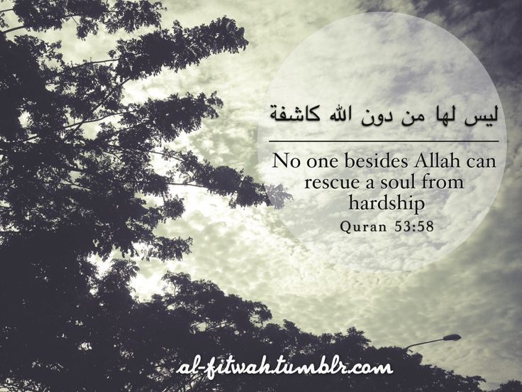You don't need the whole world to love you, you just need One…Allah.  - Abdulbary Yahya