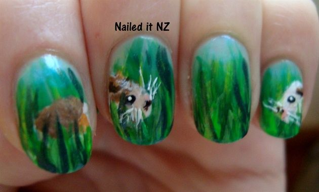 Cute Pig Nail Art Designs : Best images about guinea pig art on pinterest