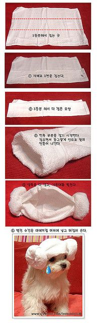 Howto: Princess Leia hair-do with a towel by minwoo, via Flickr
