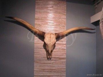 "Lifestyle94-Lifestyle Bull Skull L 124874 <span style=""font-size: 6pt;""> Dierenkop-Hoorns-Trofee-Dierenschedel-Schedel-diereschedel-crane-en-resine-schaedel-Tiereschaedel </span>"
