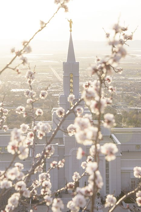 Spring at the Bountiful Temple