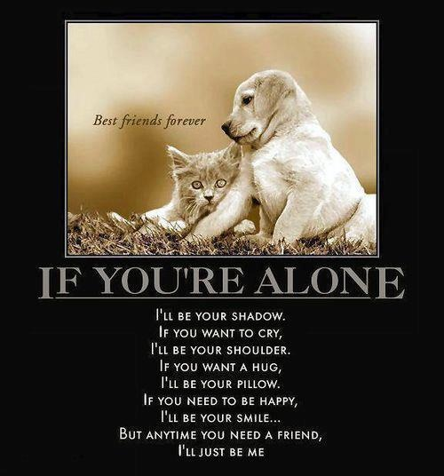 you are not alone, I'll be there for you... though we're far apart, you're always in my  heart....