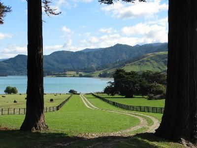 Nelson Farms and Stations For Sale - New Zealand Sotheby's International Realty