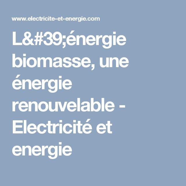 L'énergie biomasse, une énergie renouvelable - Electricité et energie