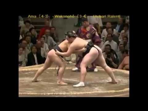 FIGHTERS    SUMO    IN    ACTION