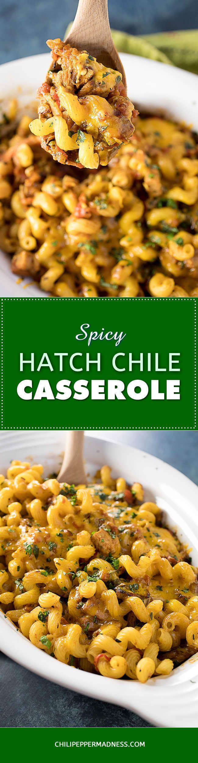 Spicy Pork-Hatch Chili Casserole –  This one-pan easy-bake casserole recipe is loaded with the savory flavors of roasted Hatch chile peppers, tomatoes, pork loin, pasta noodles and cheddar cheese. It's a perfect weeknight meal. #hatch #chile #recipe #pasta #casserole