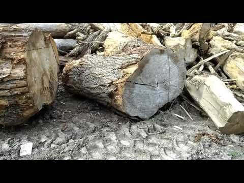 Cheap Firewood at the Landfill? http://rethinksurvival.com/cheap-firewood-landfill-video/