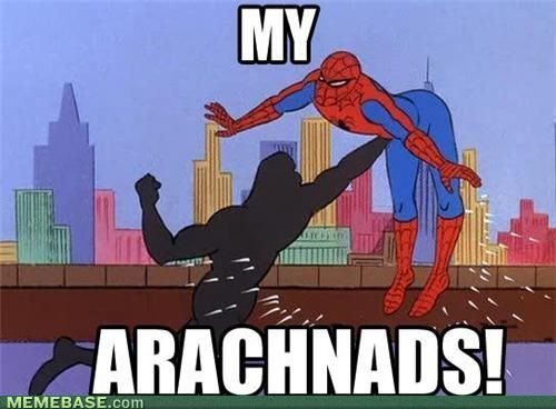 I Think I Just Shot Web: 1960S Spiderman, Happy Birthday, Spiders Men, Felt, Memes Pictures, Spiderman Memes, Funny Stuff, Humor, Fandom