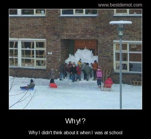 Obviously a school of geniuses.: Schools, Snow, Funny Stuff, Humor, Funnies, Smart Kids, Eternal Recess, Kids Work
