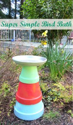 Make a bird feeder!