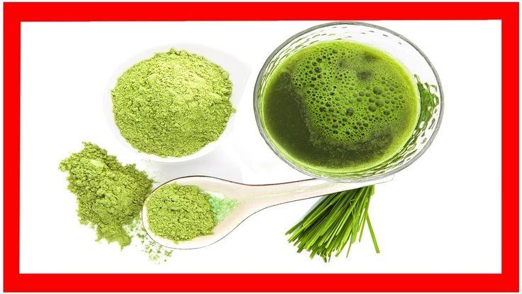 Espirulina Para Bajar De Peso Como Se Toma Descubra la manera más efectiva de bajar de peso con la alga espirulina perú de bionutrec..... Alga espirulina vivero Uno de sus ingredientes es el aminoácido triptófano sintetizador de proteínas y estabilizador del sistema nervioso central. 1 cucharadita de polvo de alga espirulina. Si necesitas perder peso de una forma rápida y efectiva la dieta para bajar de peso en un día puede ser una opción interesante. Etiqueta - Dieta para bajar de peso…