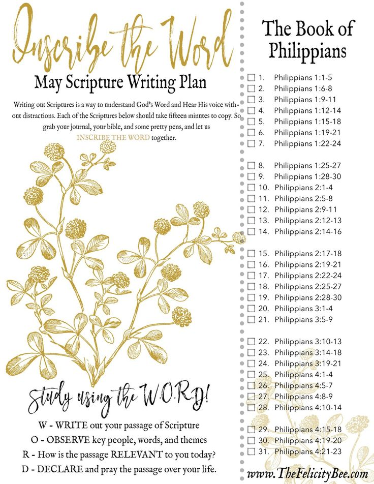 Sufficiency of scripture essay