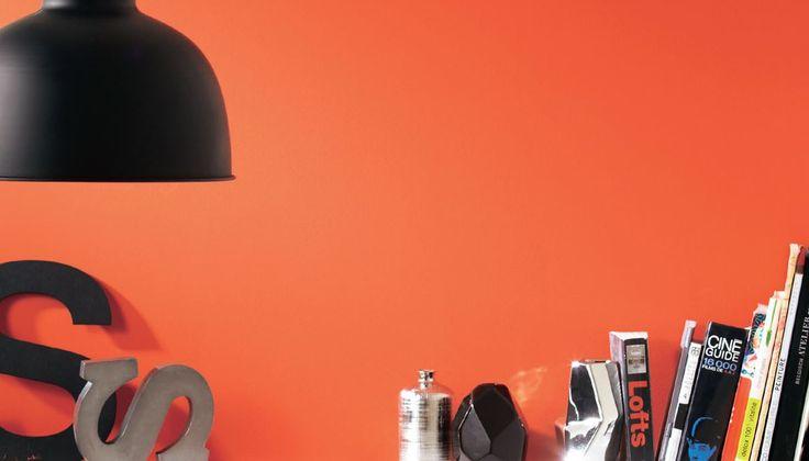 #Idropittura Murale Colorata Life Style - 4 L - Disponibile in 15 colori e in altri formati • Ecolabel • Ref. 33884543 - Prezzo 34.90 € (offerta valida fino al 20/07/2014). http://www.leroymerlin.it/catalogo/pittura-murale-colorata/idropittura-murale-life-style-sahara-4-l-33884543-p #pittura #vernice