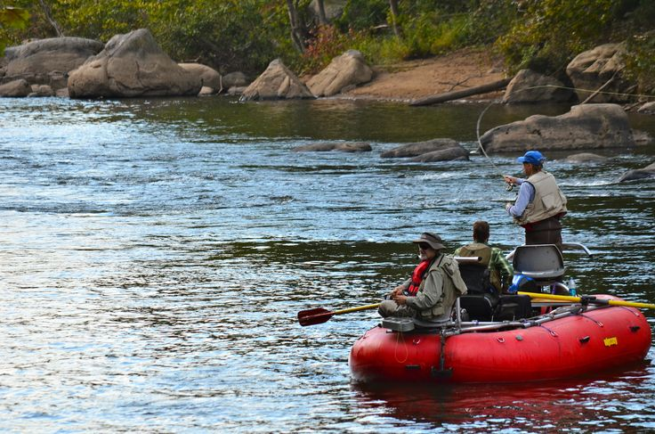 16 best fishing on the youghiogheny river images on for Youghiogheny river fishing