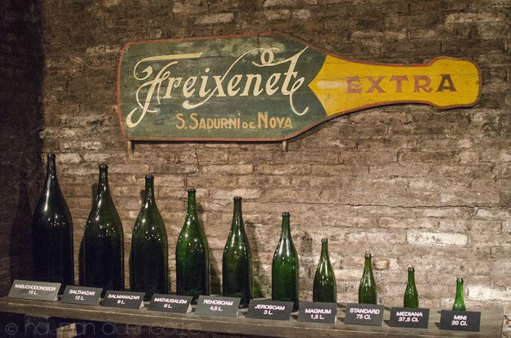 Nauran auringolle:Many bottle sizes in Freixenet
