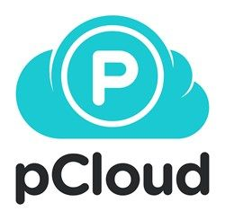 pCloud, an ambitious cloud storage company, made a revolutionary step towards the digital currency and is now accepting Bitcoins.
