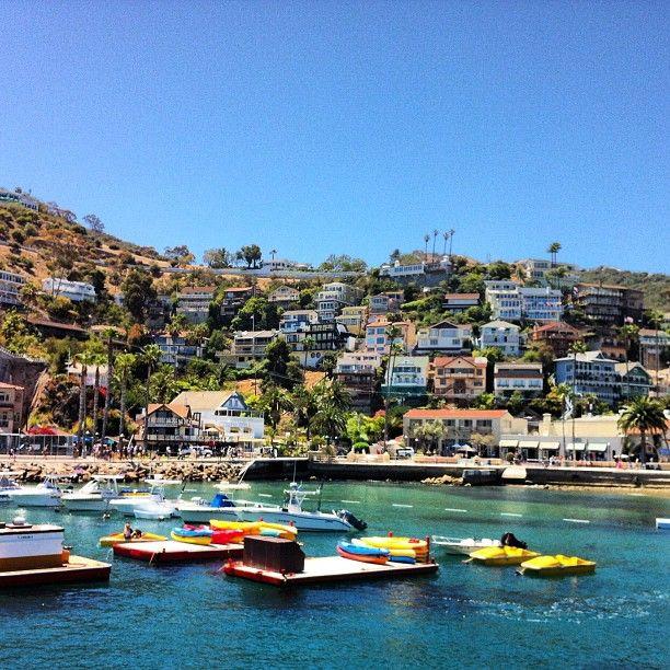 Catalina Island #familyvacation #cruise