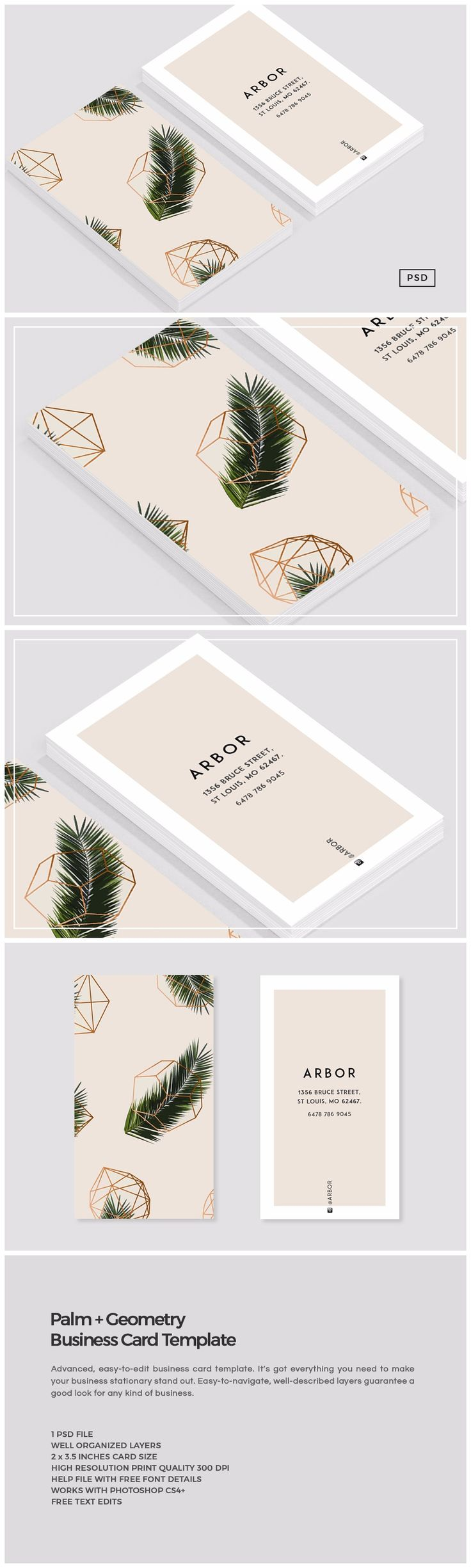 Palm + Geometry Business Card by The Design Label on Creative Market