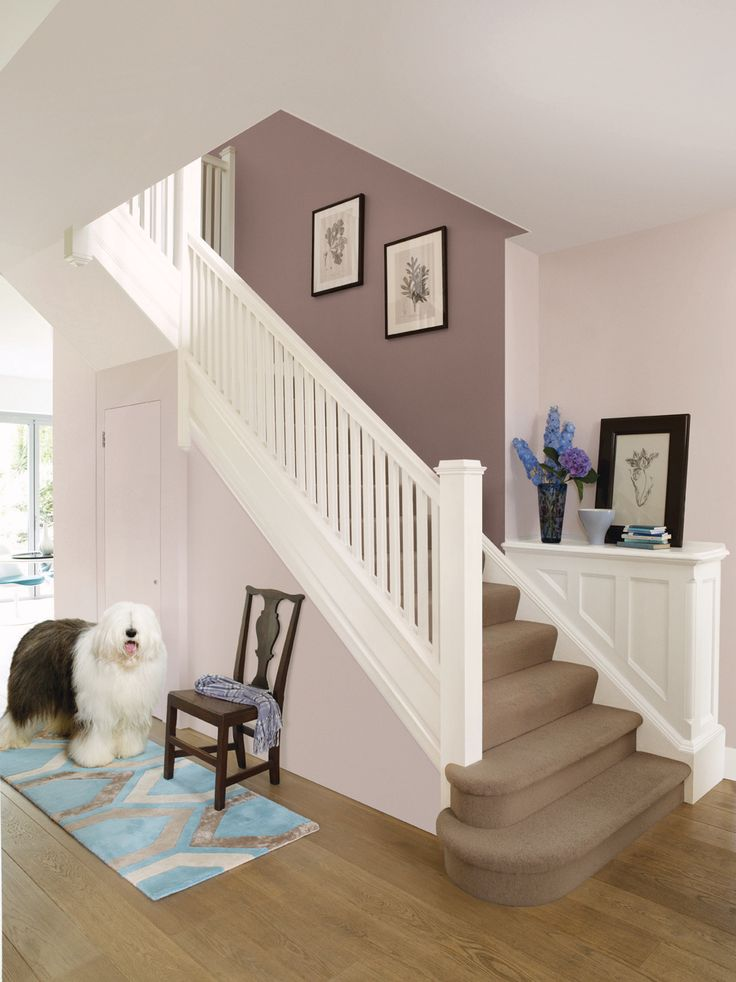 Hall and stairs - neutral paint colours