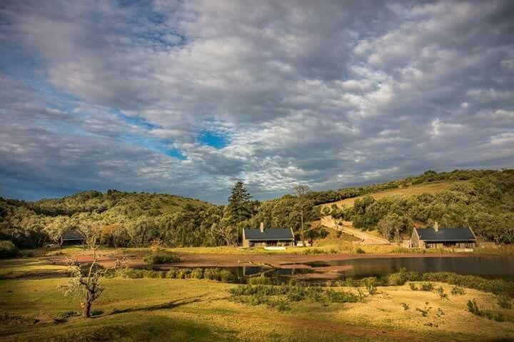 Luxury Bush Villas Botlierskop Private Game Reserve