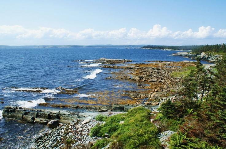 Coastline, Taylor's Head, Nova Scotia.