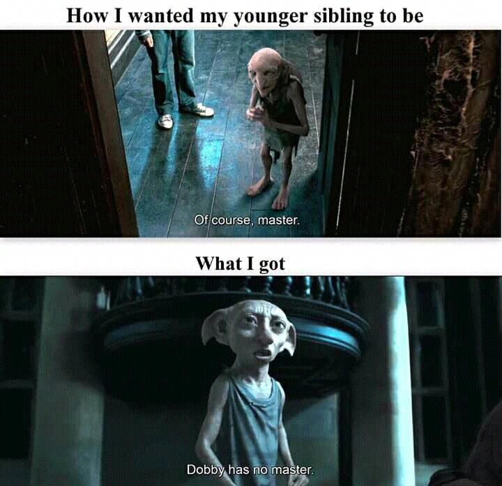 Yeah Younger Siblings Are Honestly The Absolute Worst Harrypotterfandom Harry Potter Jokes Harry Potter Memes Hilarious Harry Potter Memes