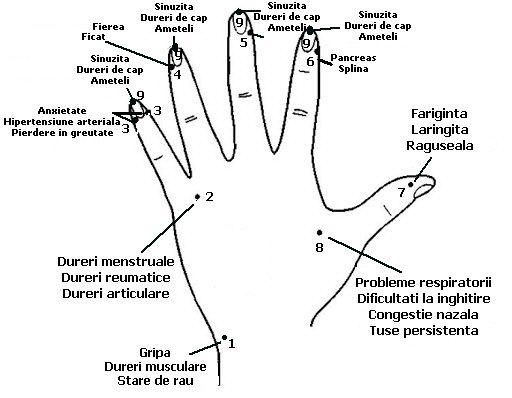 Cum sa-ti masezi degetele de la mana pentru a scapa de raceala, dureri in gat, dureri de cap si dureri de la nivelul sinusurilor | Secretele