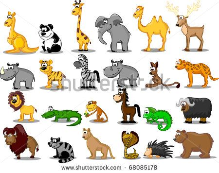 Extra large set of animals including lion, kangaroo, giraffe, elephant, camel, antelope, hippo, tiger, zebra, rhinoceros
