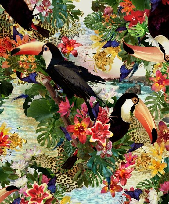 birds and flowers in the tropics