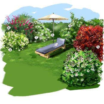 17 meilleures id es propos de buddleia plant sur for Amenagement jardin 78