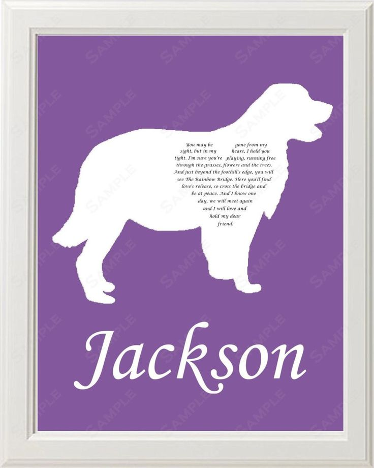 Gifts From The Dog Part - 28: Golden Retriever Silhouette Pet Memorial Love Poem Gift 8 X 10 Dog Memorial  Print