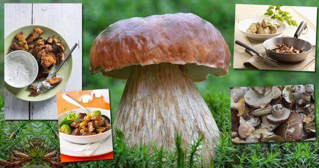 8 tipů: Jak co nejlépe zpracovat houby!