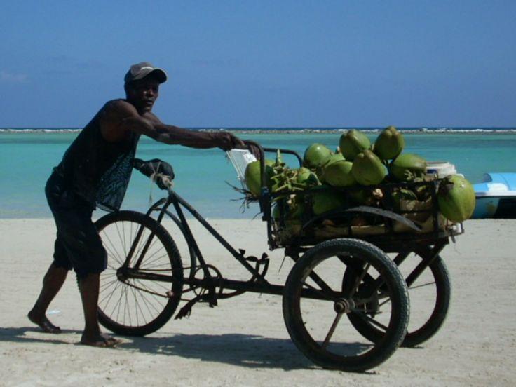 I fruttivendoli li trovi in spiaggia