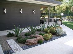 this is my idea of great landscaping. Sculptural shapes of the plants and rocks, gravel. No need to water, prune or clean up leaves/debris. Keep the weed out and run the hose over it once in a while. SOLD.