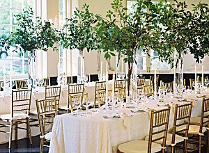 55 best wedding venues images on pinterest wedding ideas 55 best wedding venues images on pinterest wedding ideas wedding inspiration and destinations junglespirit Choice Image