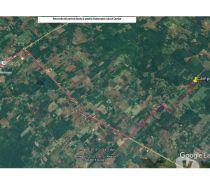 Fotos de Campo, Chacra de 21 hectáreas de uso mixto.