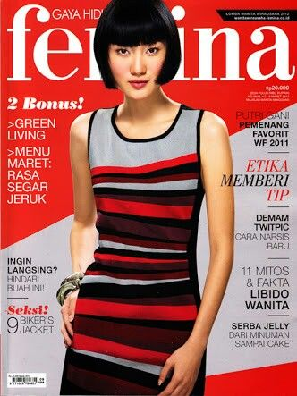 Gani's Femina Cover