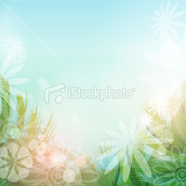 Summer flower background Royalty Free Stock Vector Art Illustration