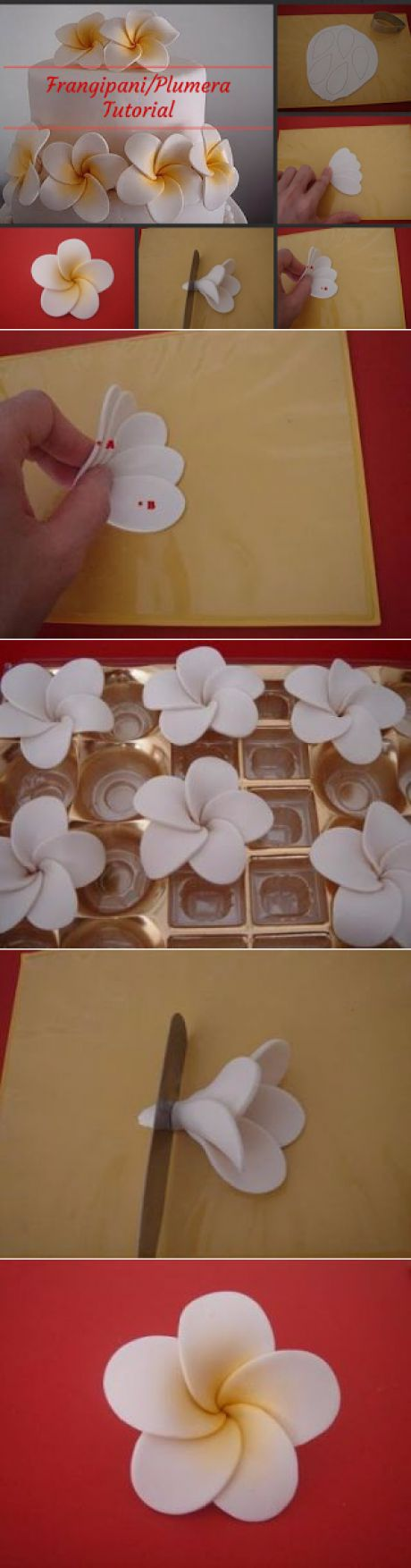 Of Wedding Cakes, Sweets and more...in Ipoh, Malaysia: Frangipani Tutorial