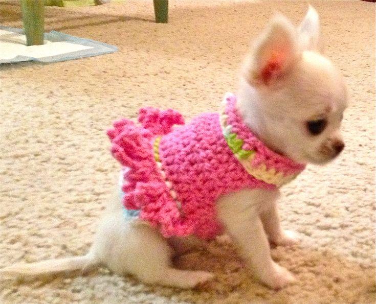 Awwww, such a cutie in a cutie pink frilly top.