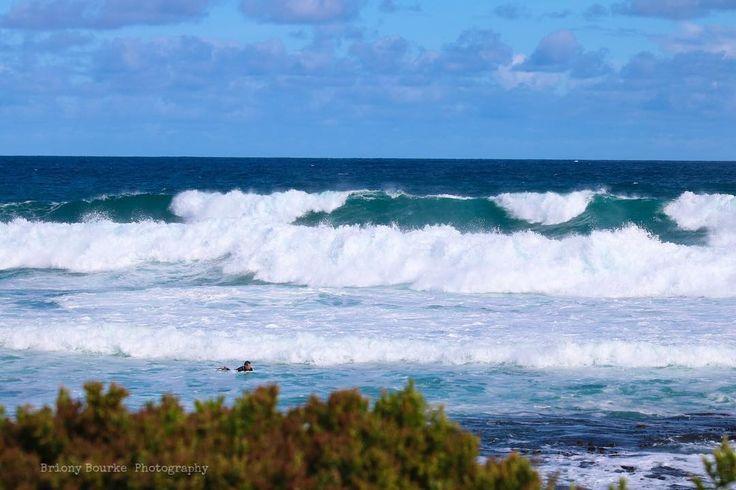 Surfs up  #portfairy #victoria #australia #surfing #beach #surf #sunshine…
