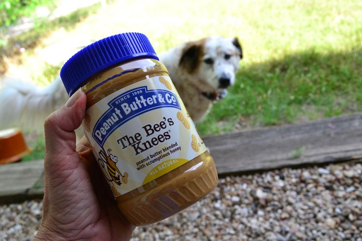 Peanut butter is a great training tool; use a little on stuffable toys as a reward after training. If you have a puppy who is biting at your hands, rub some peanut butter on your hands and have your puppy lick the peanut butter off, showing him that your hands are not for teeth. This all-natural peanut butter sells at #TuesdayMorning for just $3.99, compared to $6.99!