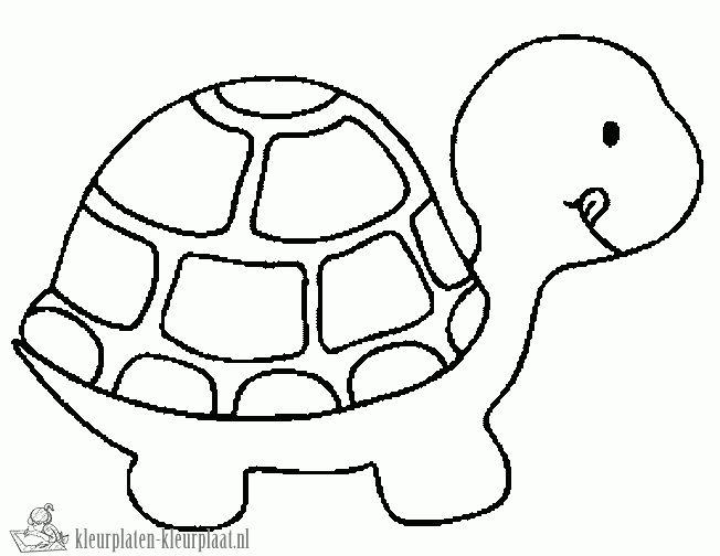 Kleurplaten schildpad | kleurplaten-kleurplaat.nl